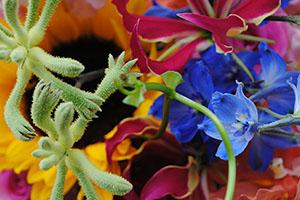 bloemen, uitvaart